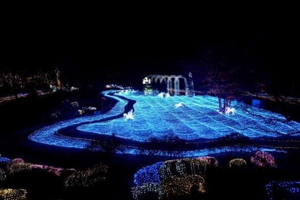 期間中はイルミイベント「京都イルミエー」が開催