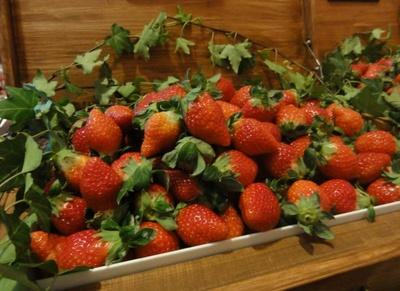 まるでイチゴ畑のようなフレッシュイチゴも食べ放題。3種のブランドイチゴの食べ比べができる