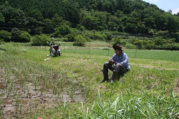 農作業の空き時間を利用して、仕事のアイディアを練る