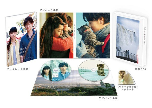 『世界から猫が消えたなら』のBlu-ray&DVDは現在発売中