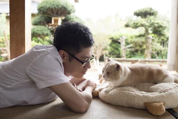 2017年も猫映画がアツい!(『ねこあつめの家』)
