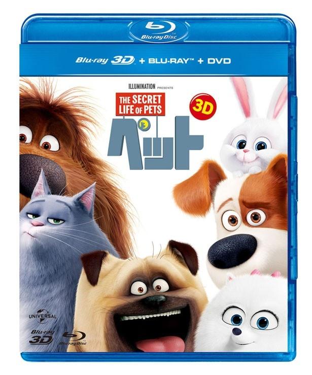 『ペット』ブルーレイ+DVDセットは発売中