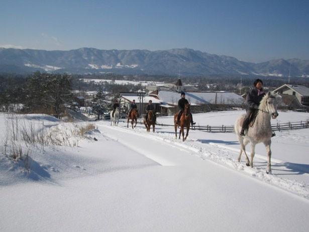 【写真を見る】休暇村蒜山高原が販売する特別宿泊プランは、雪上での乗馬体験も楽しめる