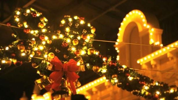 【写真を見る】クリスマスならではの美しいパーク風景も要チェック!