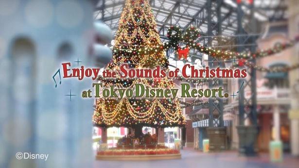 クリスマスのスペシャル動画が公開中