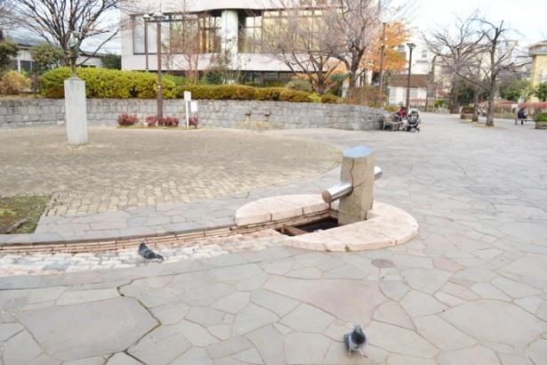 上池袋図書館に隣接する広場は、ゆっくりと時間が過ぎているようなのんびりした雰囲気(上池袋さくら公園)