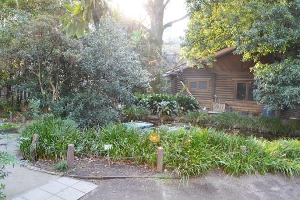 林政学者の島田錦蔵さんの屋敷跡を整備した公園「池袋の森」(池袋平和通り商店街)