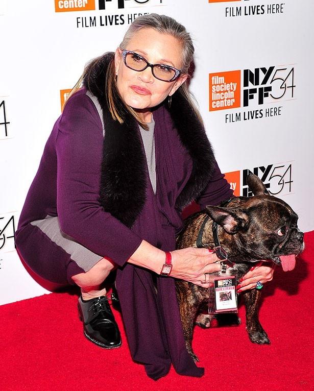 キャリー・フィッシャーと愛犬のブルドッグ、ギャリ―
