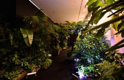 ジャングル風のバカルディバーが登場。チームラボらしい驚きの光の演出もある
