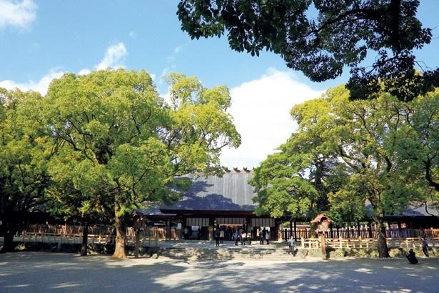 第2特集は「おいしい初詣さんぽ&年末年始イベント」