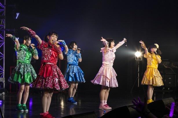 神宿が12月28日にZepp Diver City Tokyoにてワンマンライブを行った