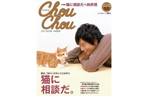 表紙は向井理さんと、猫モデルエミーくん(♂)