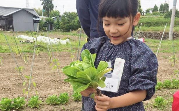 【写真を見る】「mirai kids program(ミライキッズ プログラム)」に参加した子どもたちは命の尊さも学んでいく