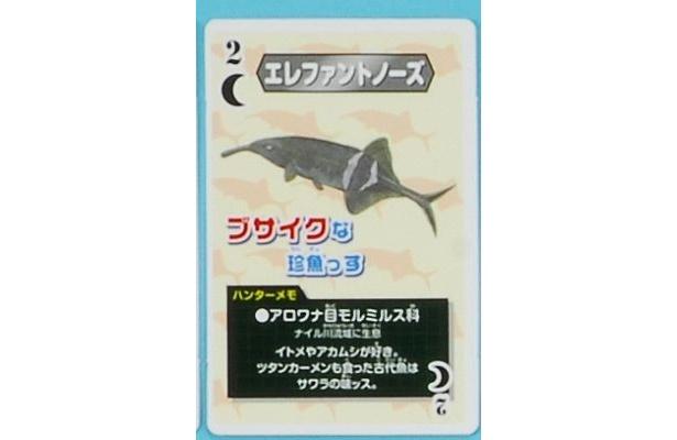 珍獣カードの一枚