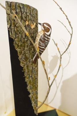 本物と見間違えてしまいそうなコゲラも木や銅線で作られたもの