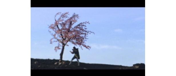 ボーカルの氏原が、桜を日本刀で斬るシーンが話題にとなったDOESの「三月」