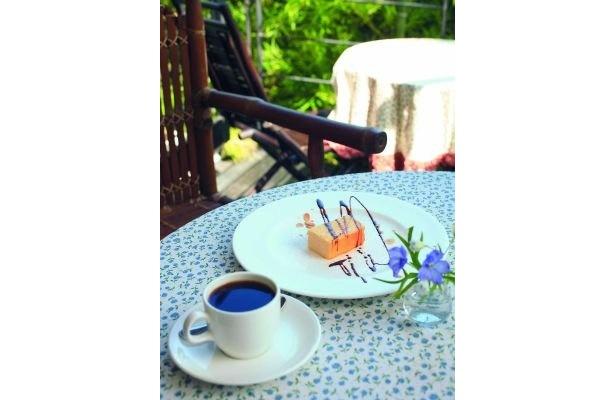 人気のチーズケーキ(525円)と、注文してから豆をひくコーヒー(525円)。テラス席でどうぞ(GALLARY NEST)