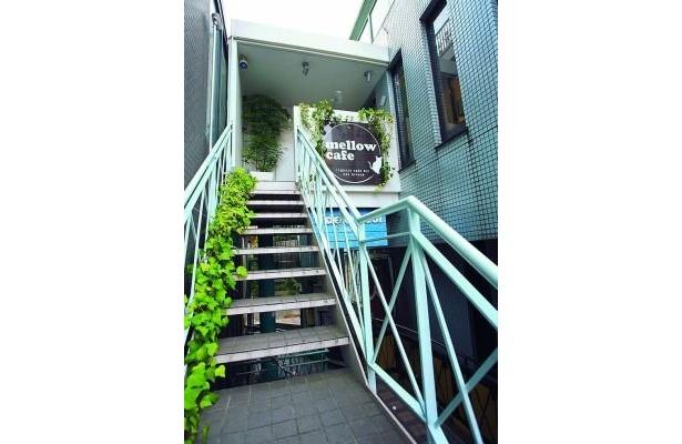 階段をあがるとmellow cafeへ