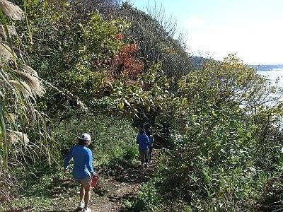今人気のトレイルランニングもできる。緑の中を歩くのは気持ちがいい/BEACH HAYAMA OUTDOOR FITNESS CLUB