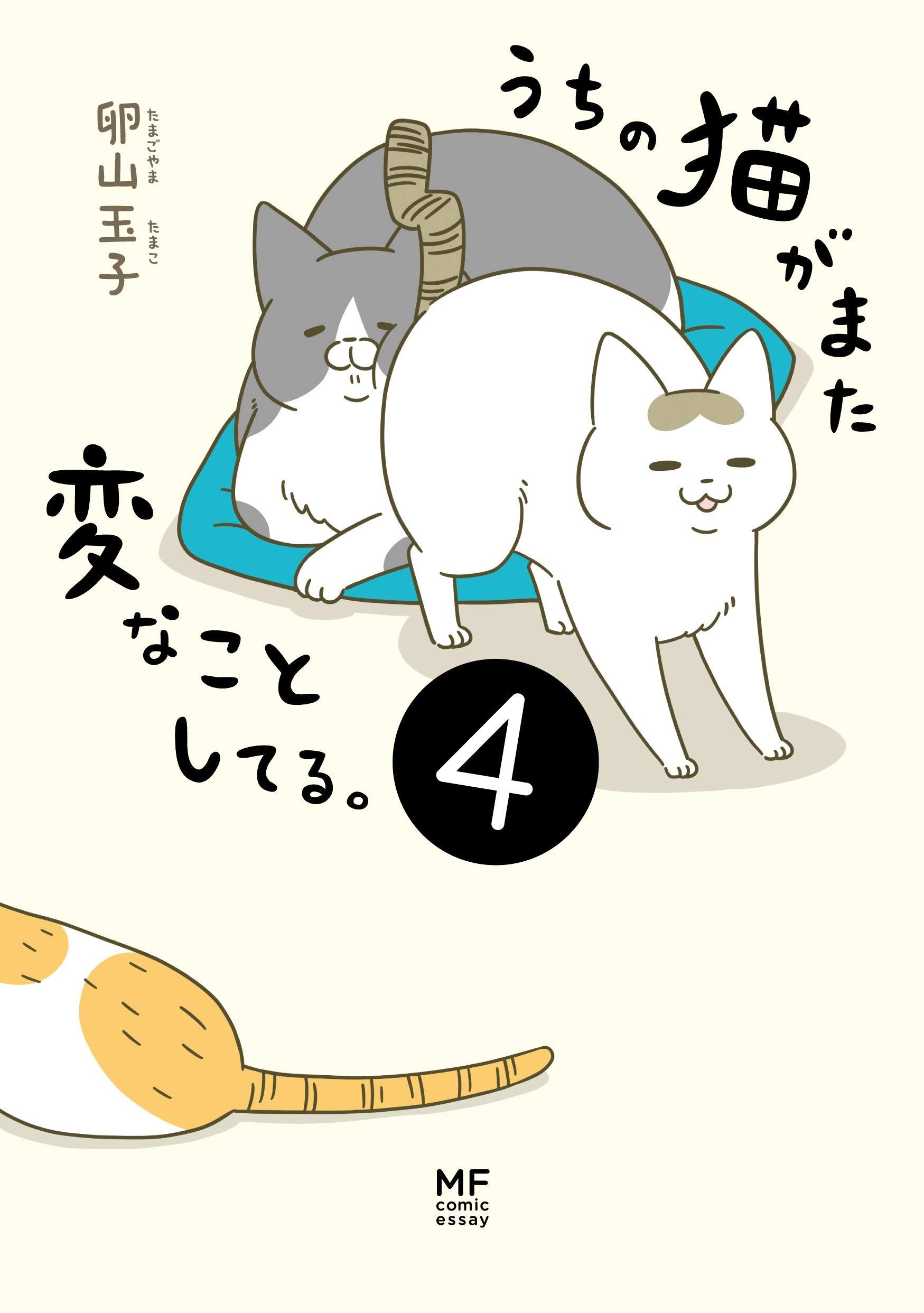 うちの猫がまた変なことしてる。4