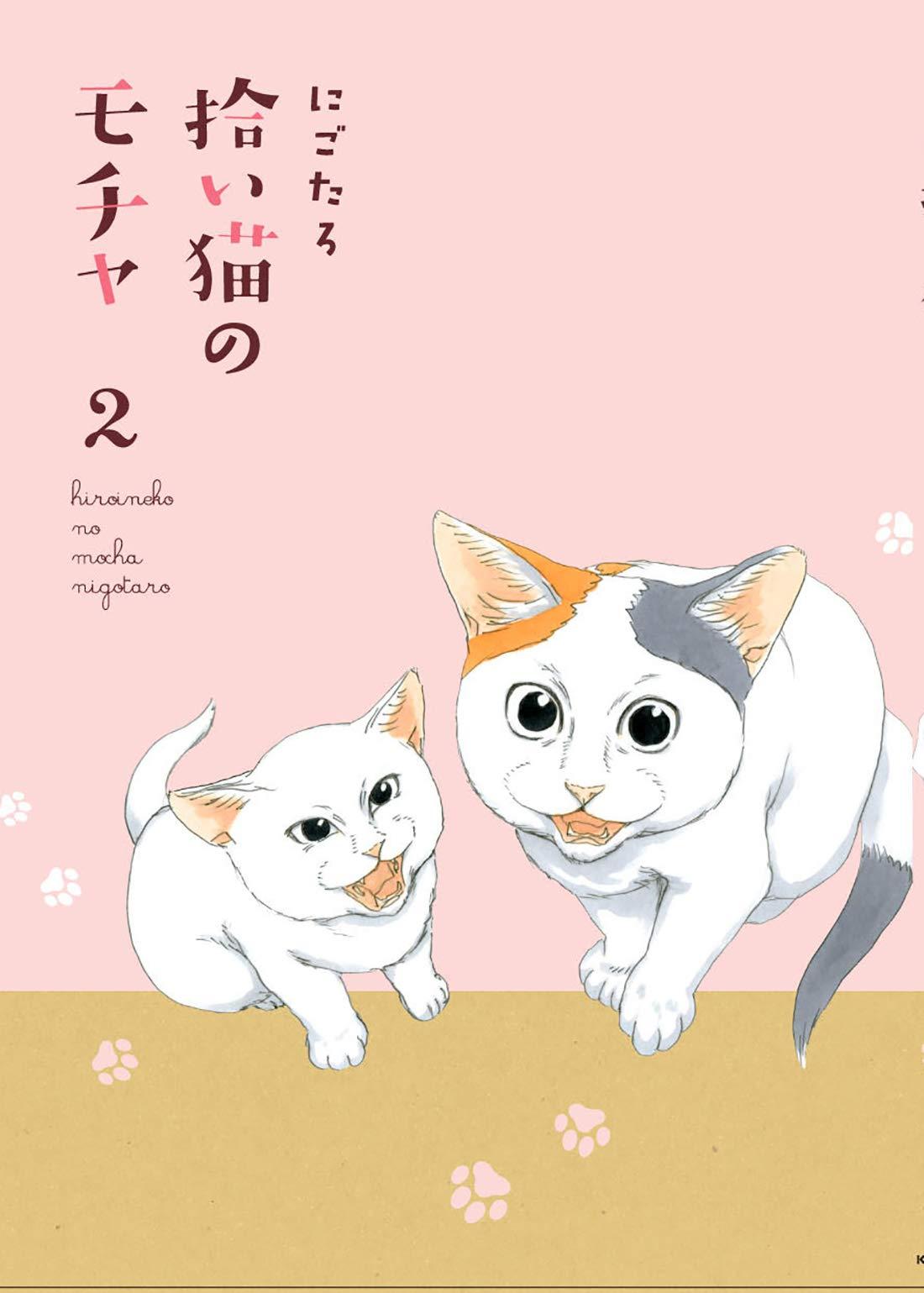 『拾い猫のモチャ2』
