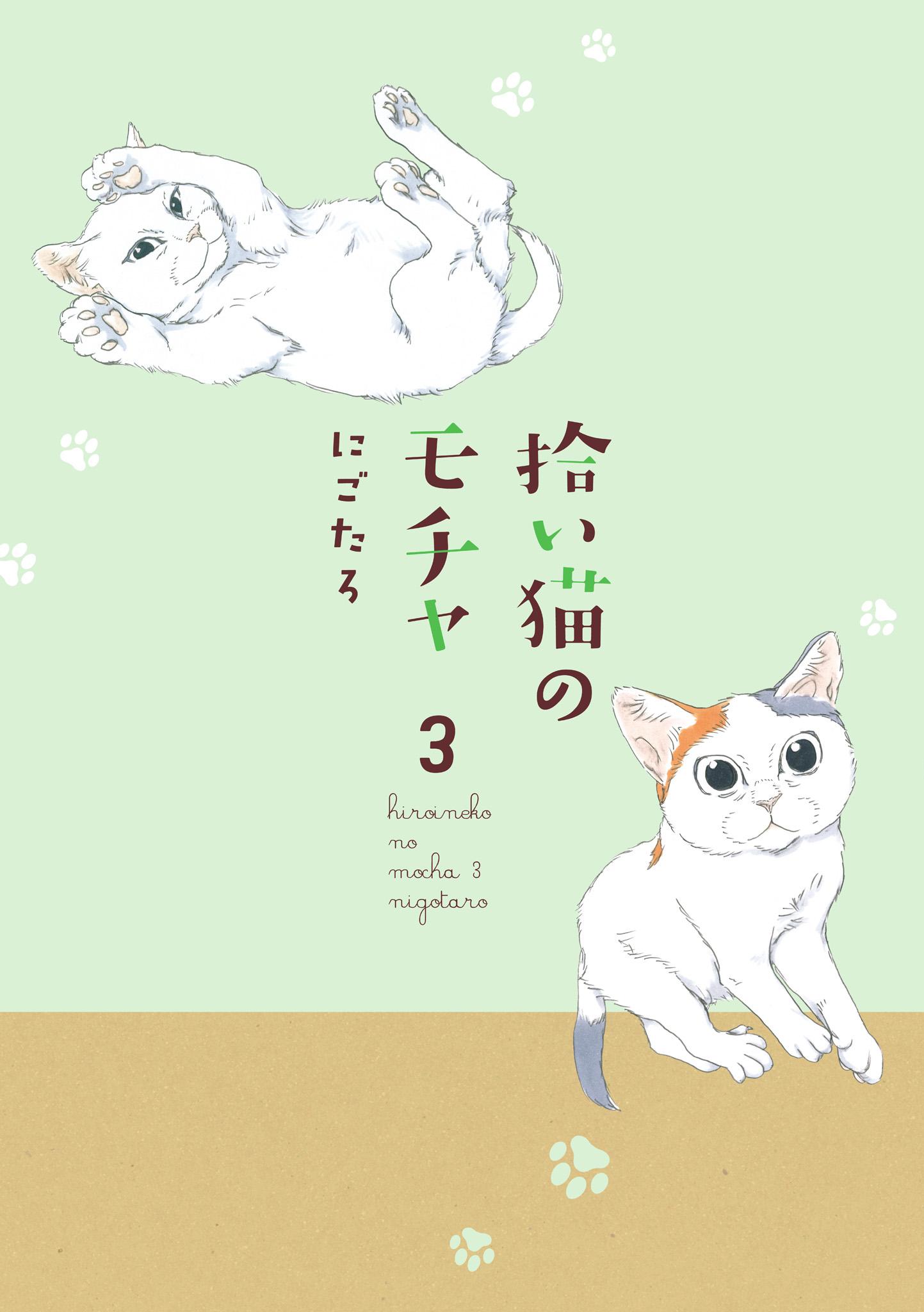 『拾い猫のモチャ3』