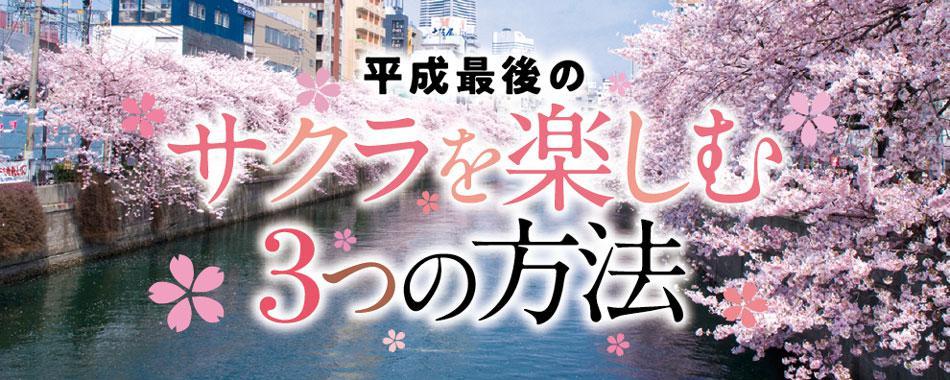 神奈川で平成最後の桜を楽しむ3つの方法