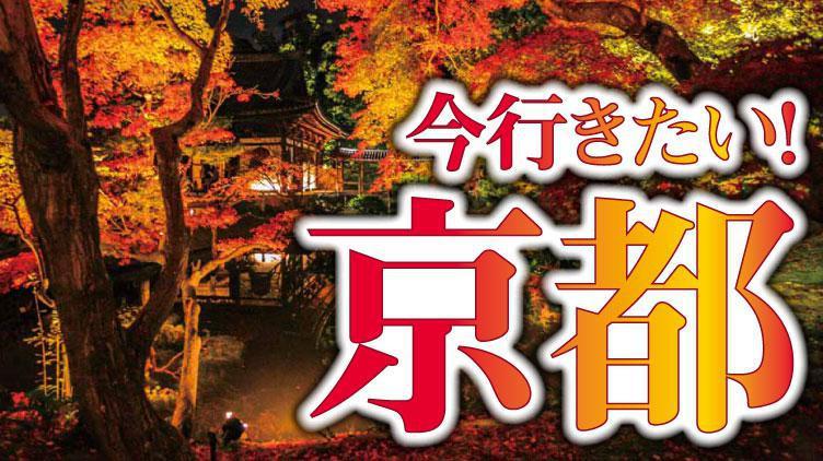 今行きたい!京都