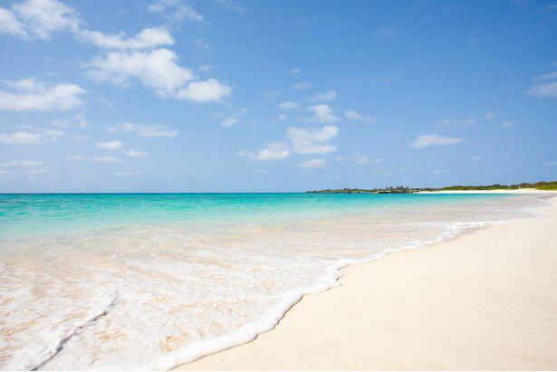 沖縄でリゾートワーク&離島観光もできる「Re:sort@OKINAWA」を紹介!