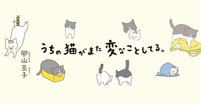 【漫画】うちの猫がまた変なことしてる。