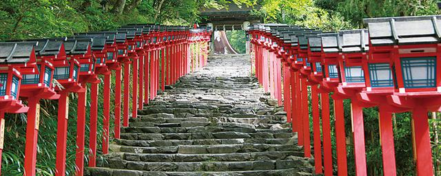 人気エリアをコースで楽しむ!京都の巡り方