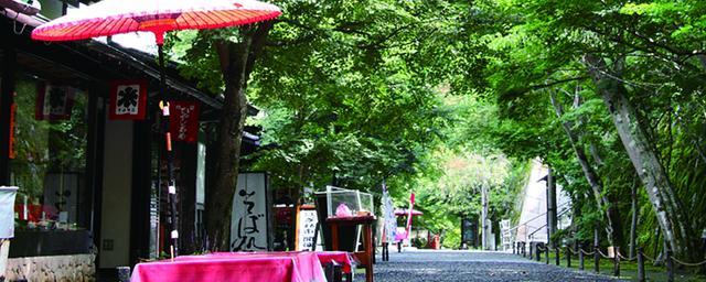 御朱印や新店も!楽しむべき京都のブーム