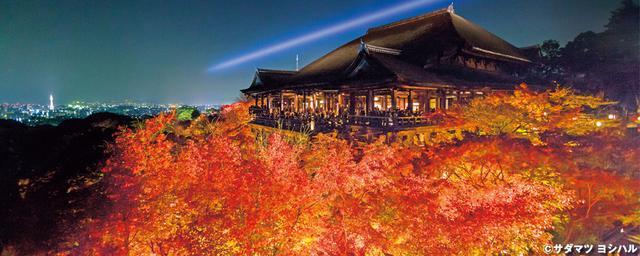 秋の醍醐味!京都の紅葉ライトアップ