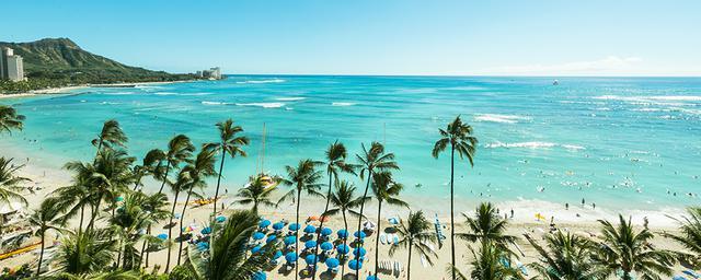 28歳女子、はじめてのハワイ