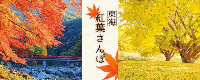 【東海エリア】絶景紅葉さんぽ