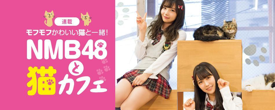 モフモフかわいい!NMB48と猫カフェ