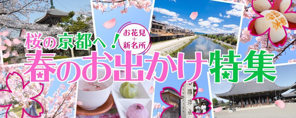 桜の京都へ!春のお出かけ特集